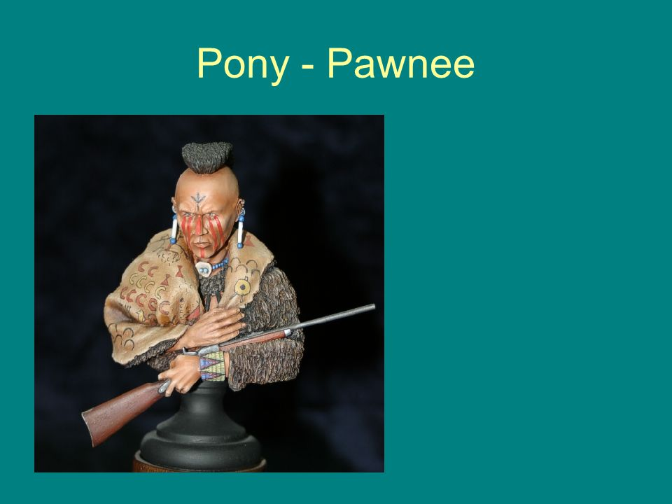 Pony - Pawnee