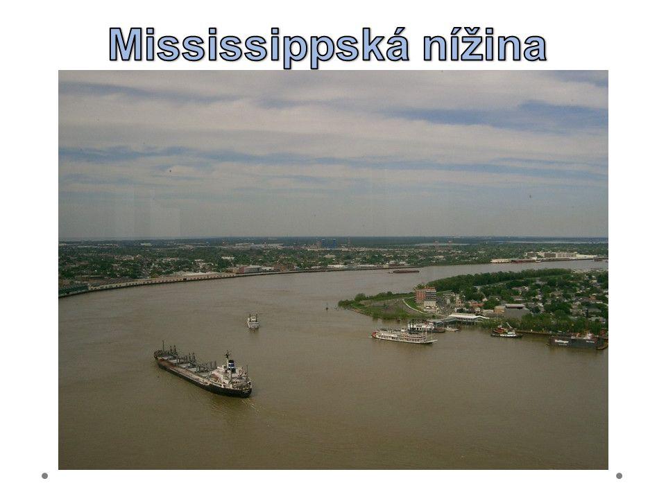 Mississippská nížina 21.6.2012 Mississippi v New Orleans