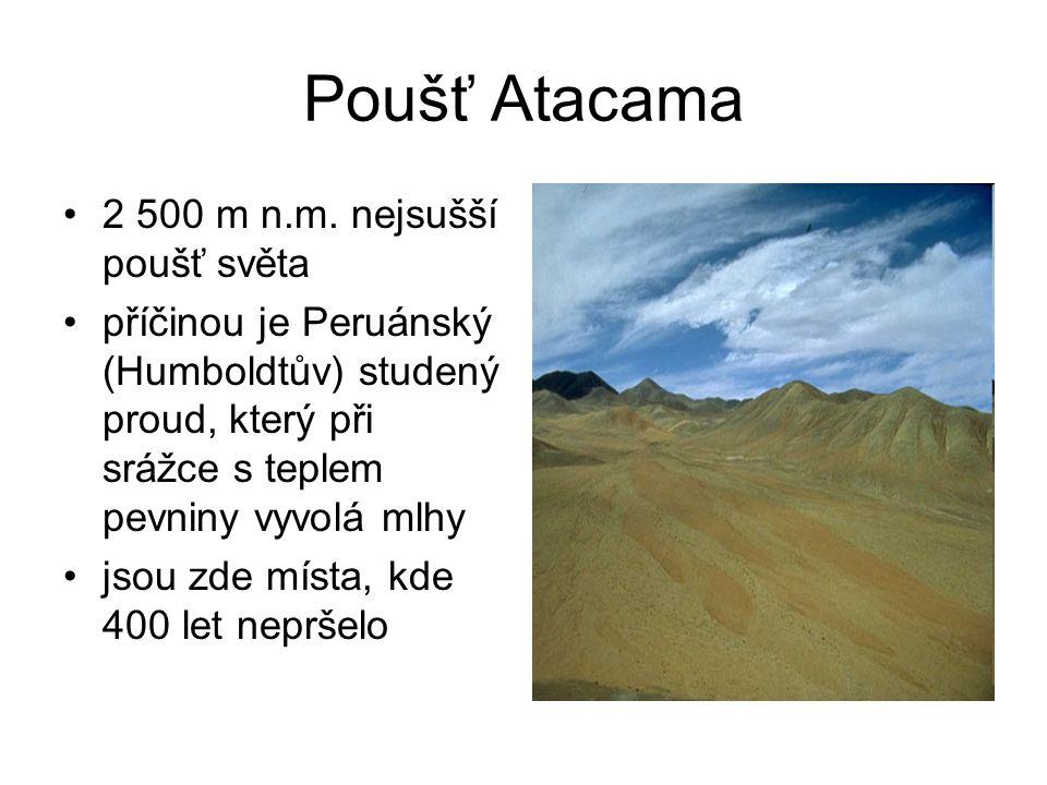 Poušť Atacama 2 500 m n.m. nejsušší poušť světa