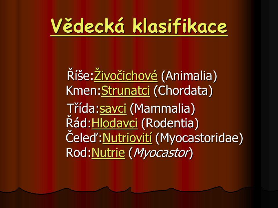 Vědecká klasifikace Říše:Živočichové (Animalia) Kmen:Strunatci (Chordata)