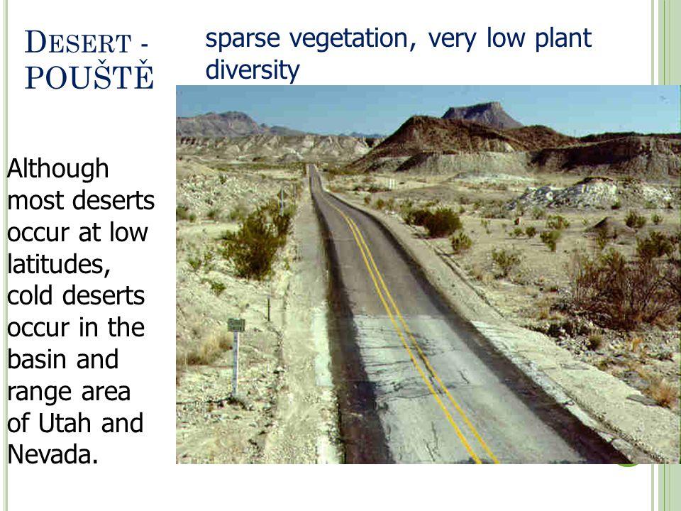 Desert - POUŠTĚ sparse vegetation, very low plant diversity