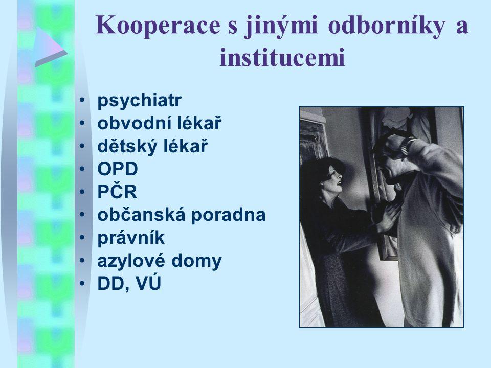 Kooperace s jinými odborníky a institucemi