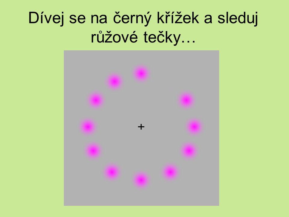 Dívej se na černý křížek a sleduj růžové tečky…