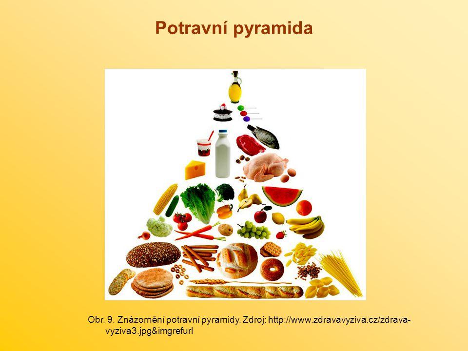 Potravní pyramida Obr. 9. Znázornění potravní pyramidy.