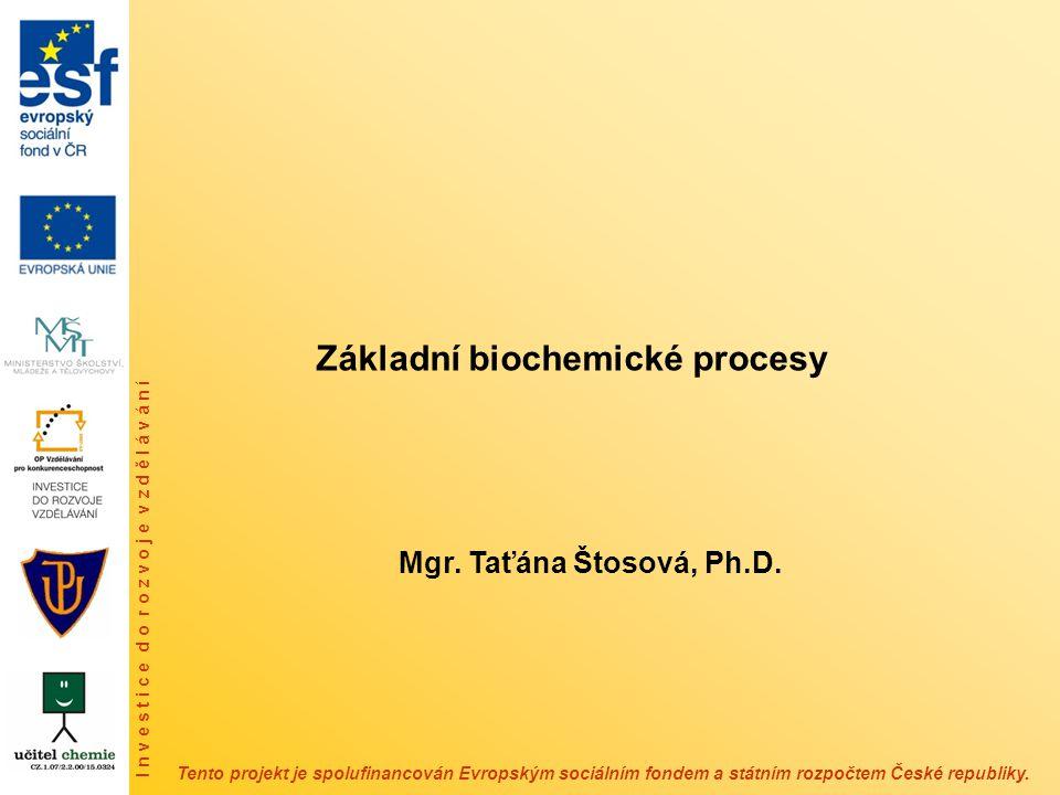 Základní biochemické procesy