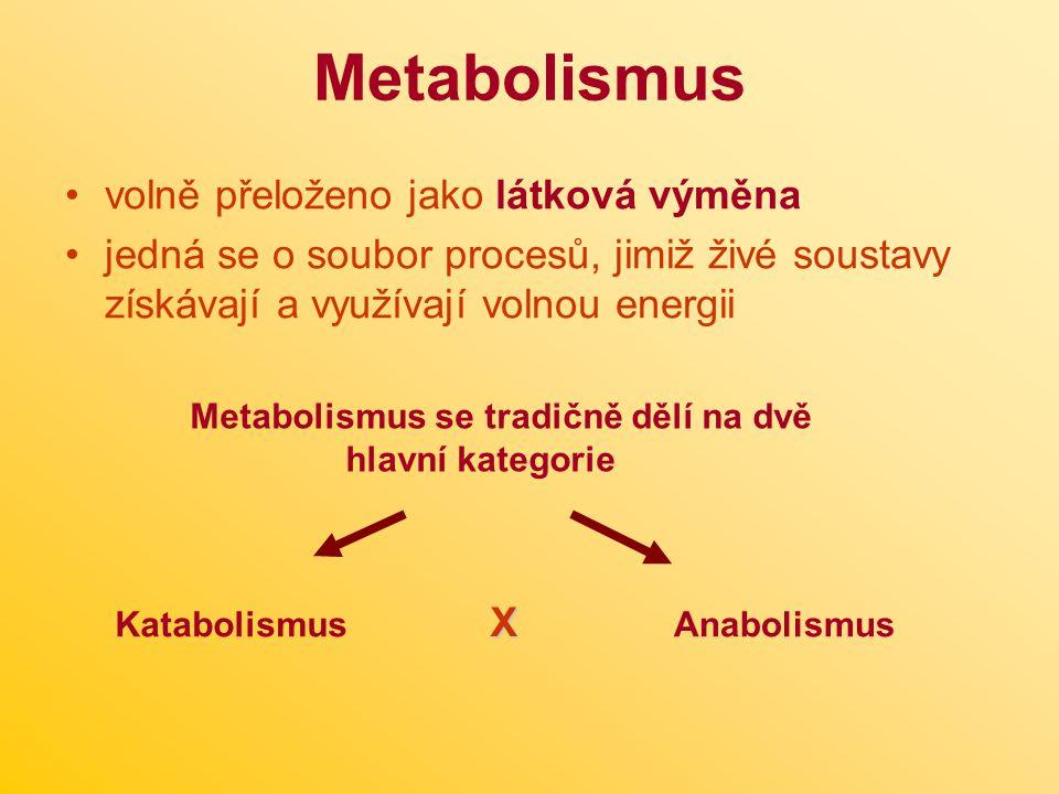 Metabolismus volně přeloženo jako látková výměna