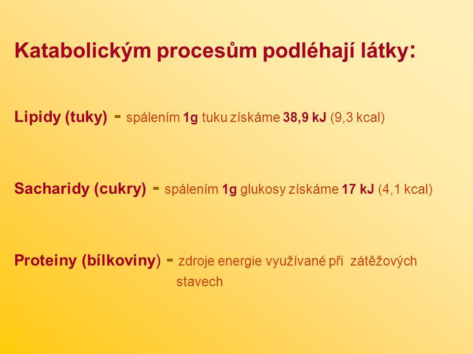Katabolickým procesům podléhají látky: