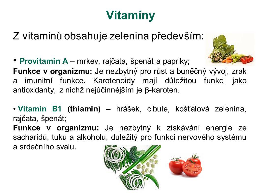 Vitamíny Z vitaminů obsahuje zelenina především: