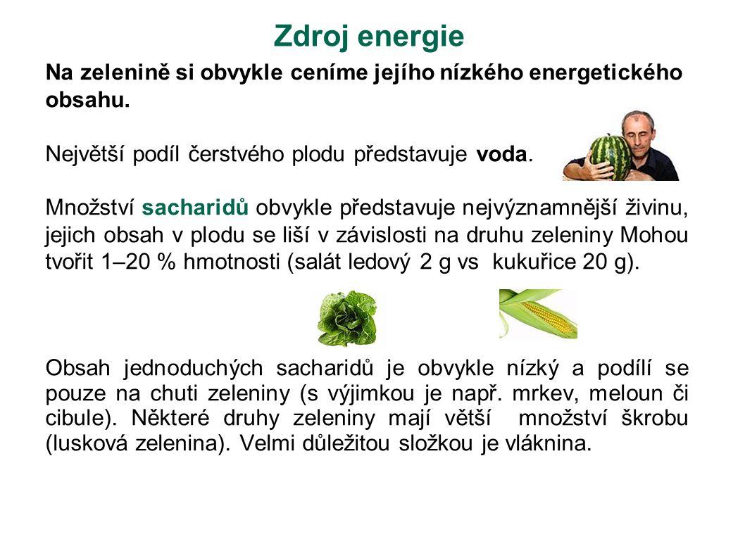Zdroj energie Na zelenině si obvykle ceníme jejího nízkého energetického obsahu. Největší podíl čerstvého plodu představuje voda.