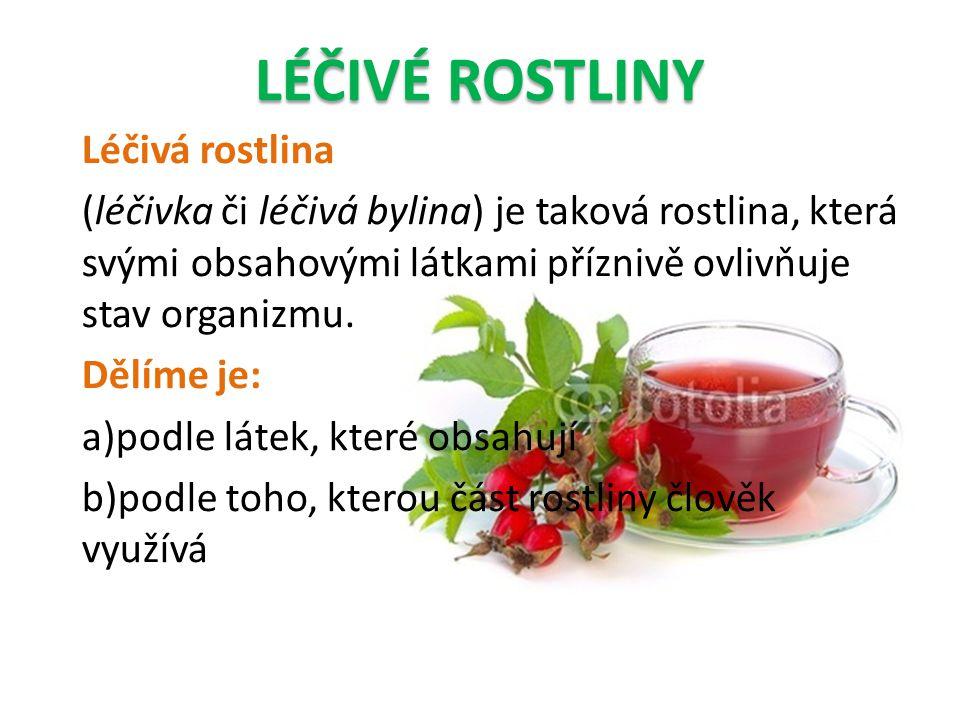 LÉČIVÉ ROSTLINY Léčivá rostlina