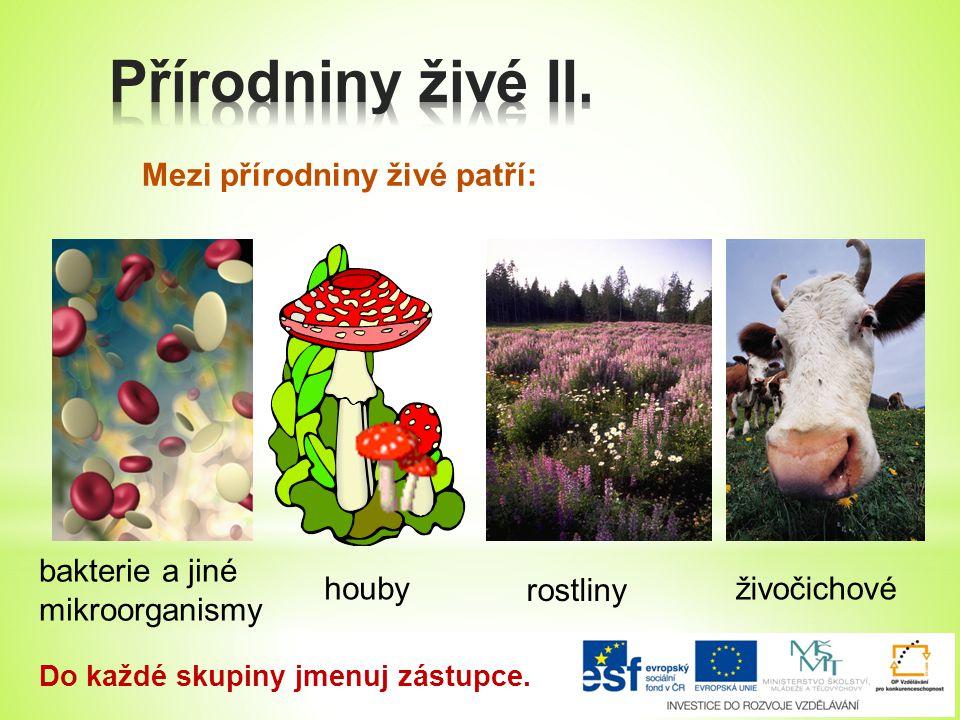 Přírodniny živé II. Mezi přírodniny živé patří: