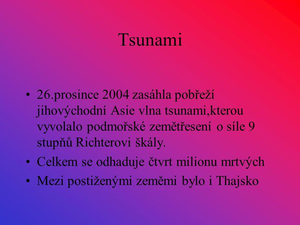 Tsunami 26.prosince 2004 zasáhla pobřeží jihovýchodní Asie vlna tsunami,kterou vyvolalo podmořské zemětřesení o síle 9 stupňů Richterovi škály.