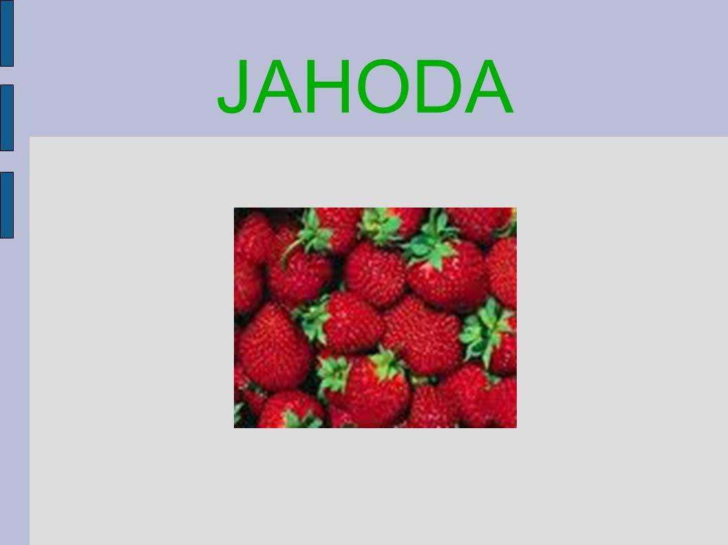 JAHODA