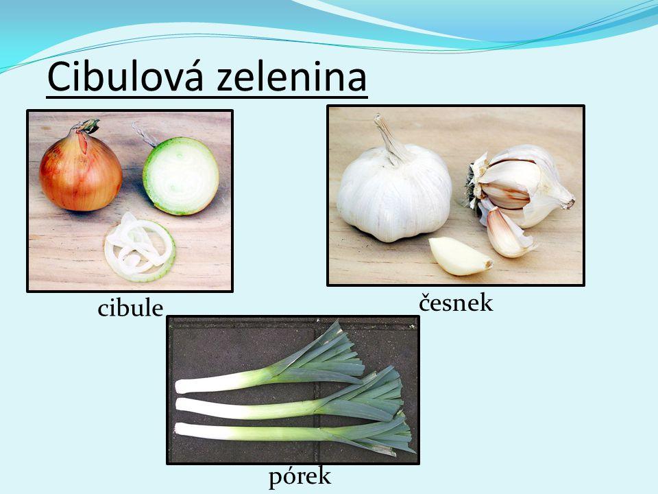 Cibulová zelenina česnek cibule pórek