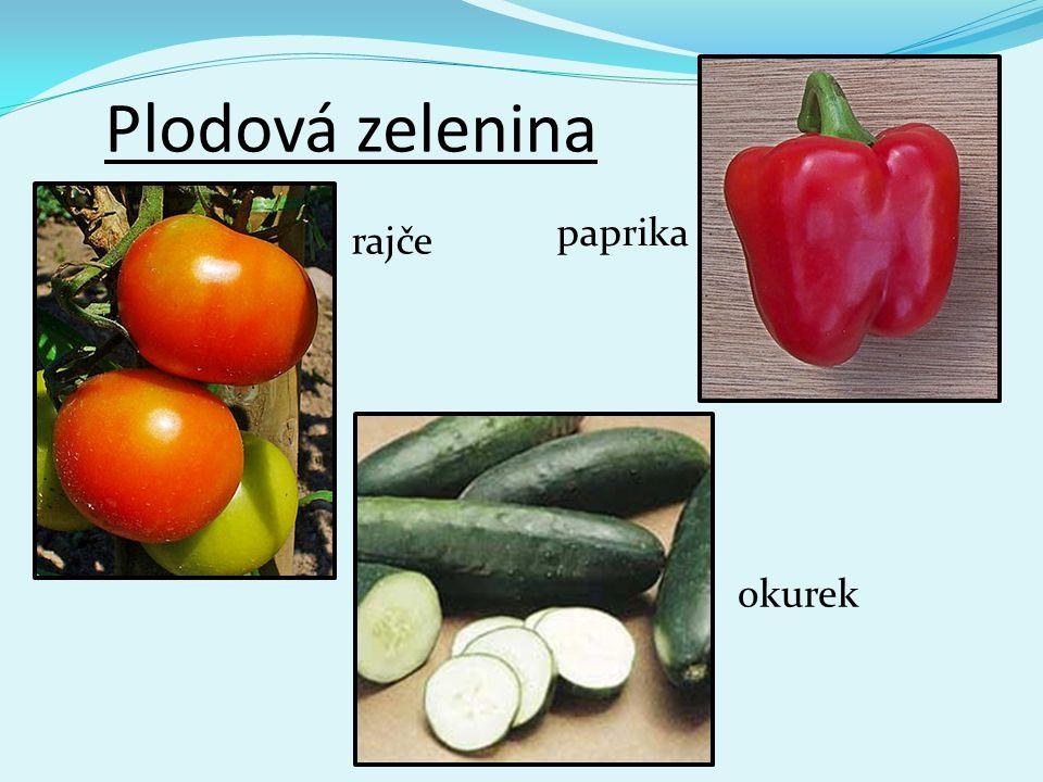 Plodová zelenina paprika rajče okurek