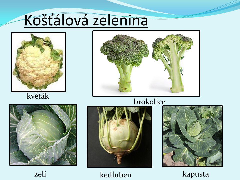 Košťálová zelenina květák brokolice zelí kedluben kapusta