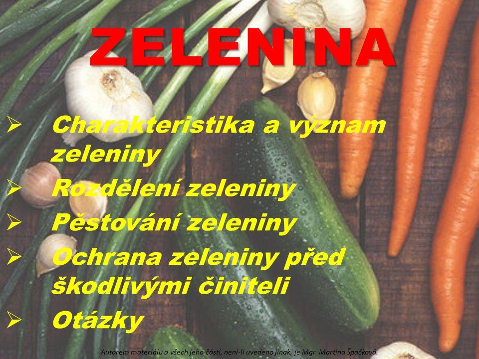 ZELENINA Charakteristika a význam zeleniny Rozdělení zeleniny