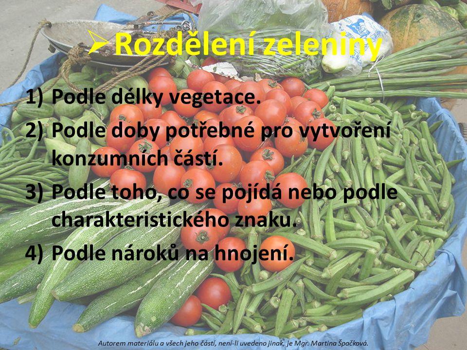 Rozdělení zeleniny Podle délky vegetace.