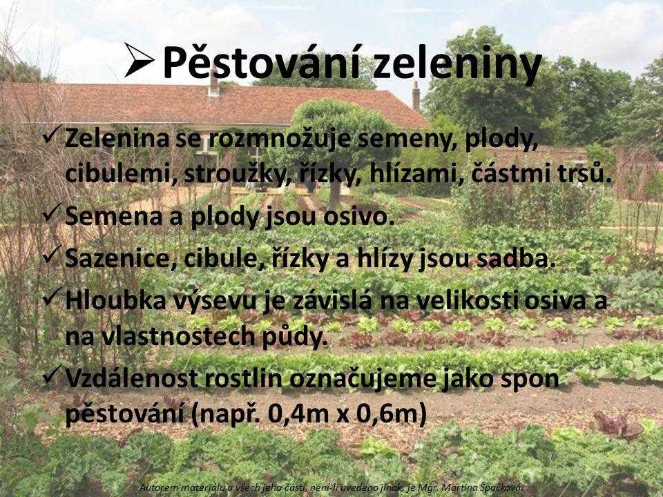 Pěstování zeleniny Zelenina se rozmnožuje semeny, plody, cibulemi, stroužky, řízky, hlízami, částmi trsů.