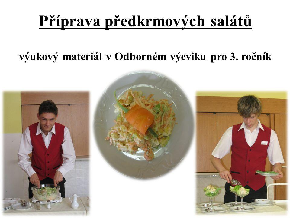Příprava předkrmových salátů výukový materiál v Odborném výcviku pro 3