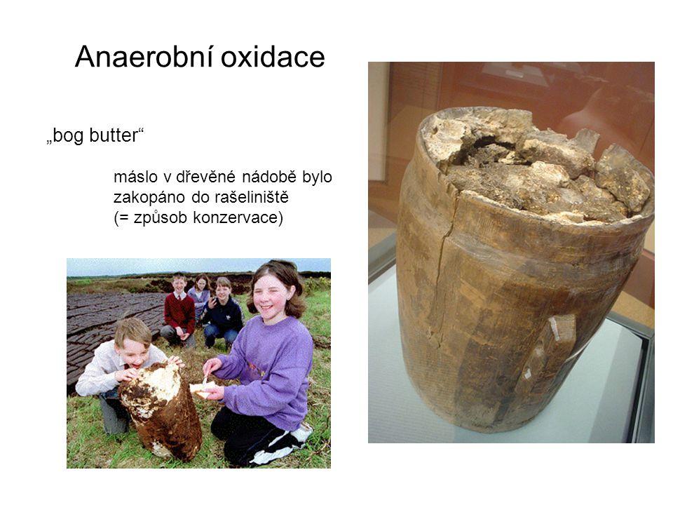 """Anaerobní oxidace """"bog butter"""