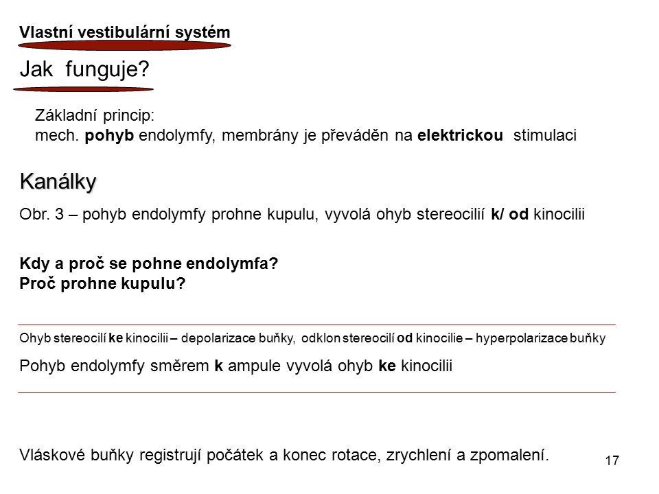 Jak funguje Kanálky Vlastní vestibulární systém Základní princip: