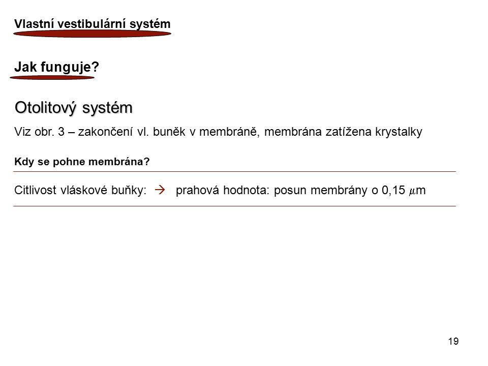 Otolitový systém Jak funguje Vlastní vestibulární systém