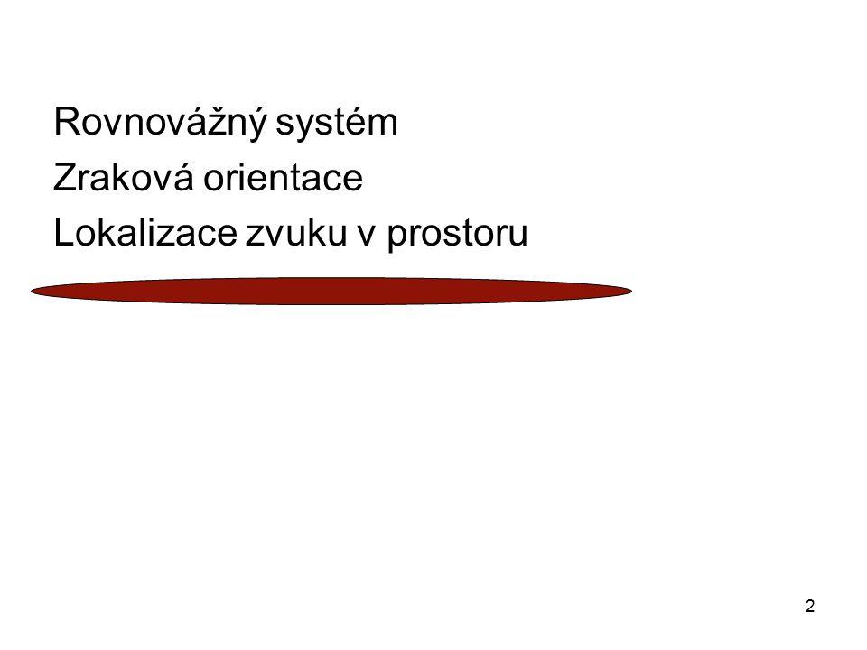 Rovnovážný systém Zraková orientace Lokalizace zvuku v prostoru