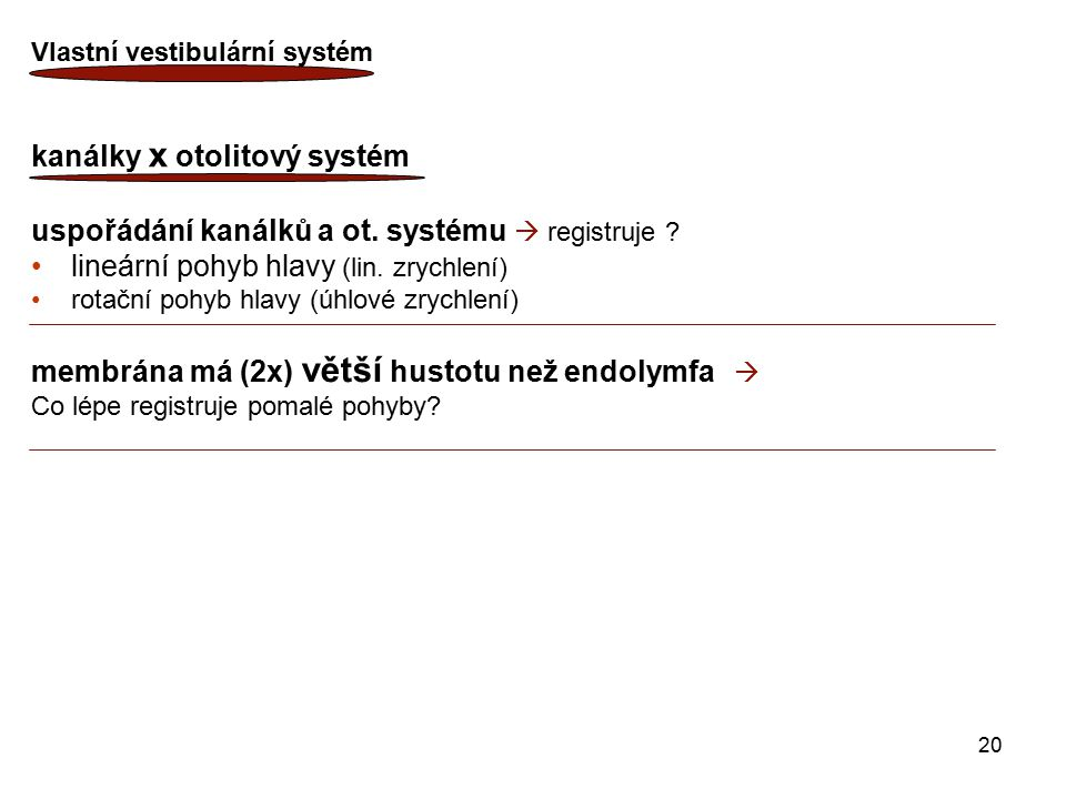 kanálky x otolitový systém