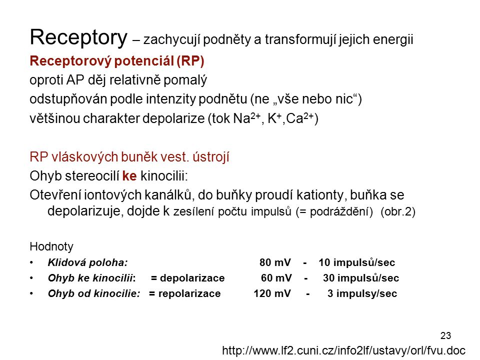 Receptory – zachycují podněty a transformují jejich energii