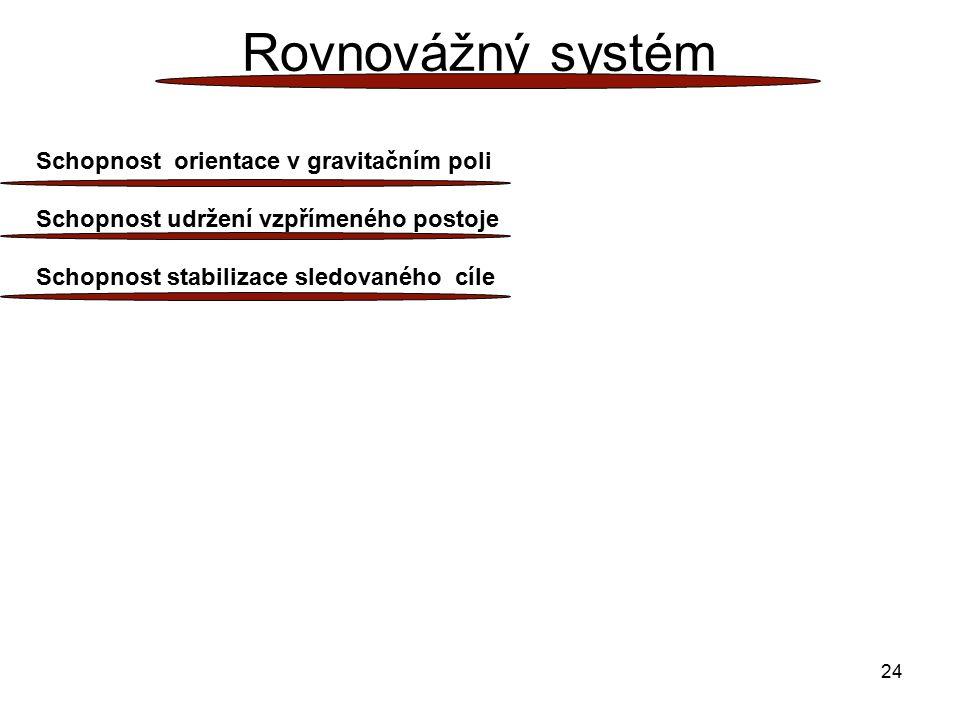 Rovnovážný systém Schopnost orientace v gravitačním poli