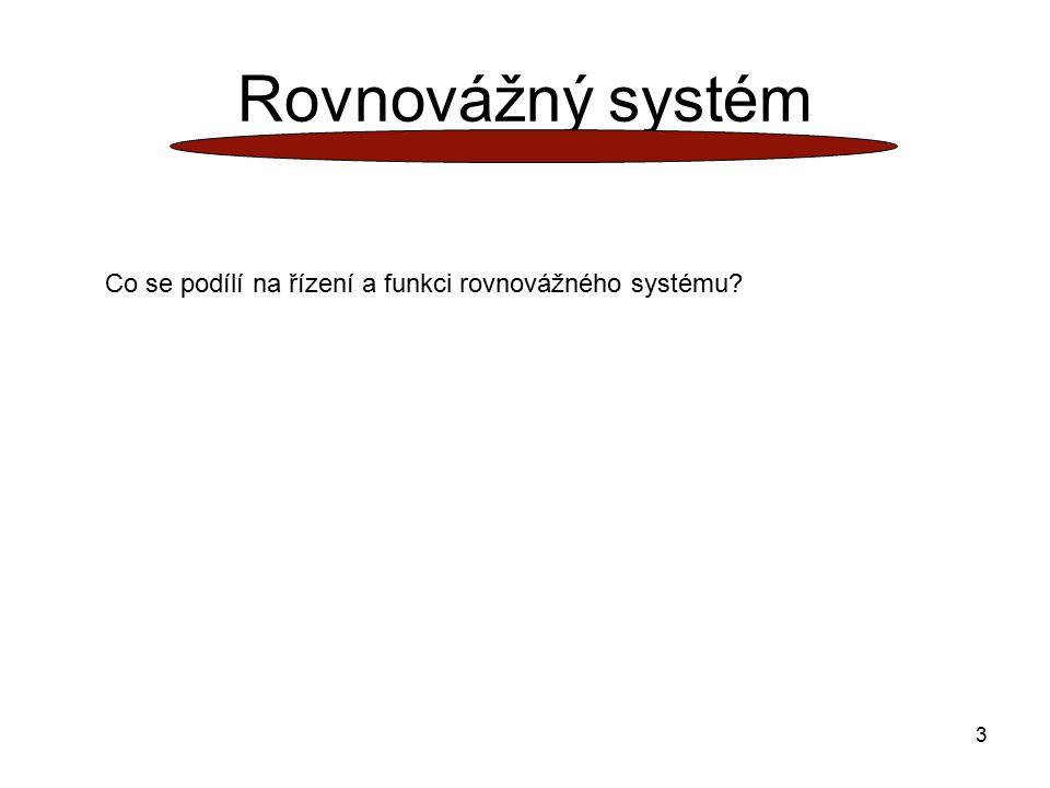 Rovnovážný systém Co se podílí na řízení a funkci rovnovážného systému