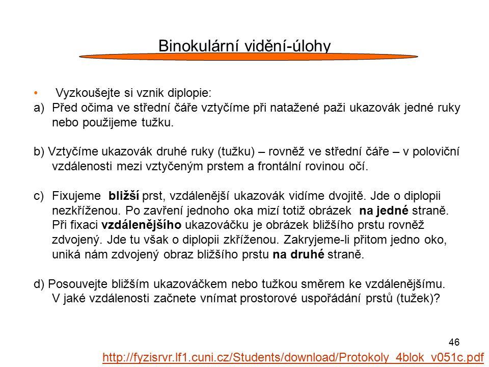 Binokulární vidění-úlohy