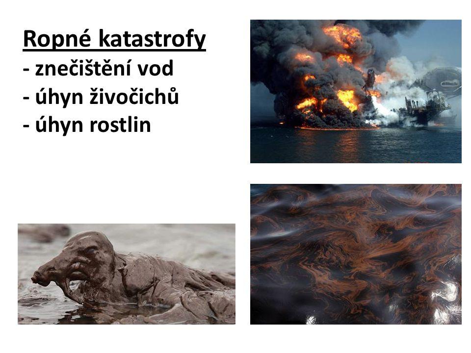 Ropné katastrofy - znečištění vod - úhyn živočichů - úhyn rostlin
