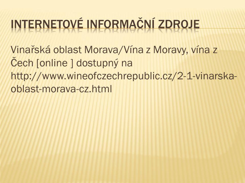 Internetové informační zdroje