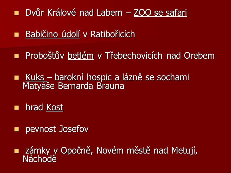 Dvůr Králové nad Labem – ZOO se safari