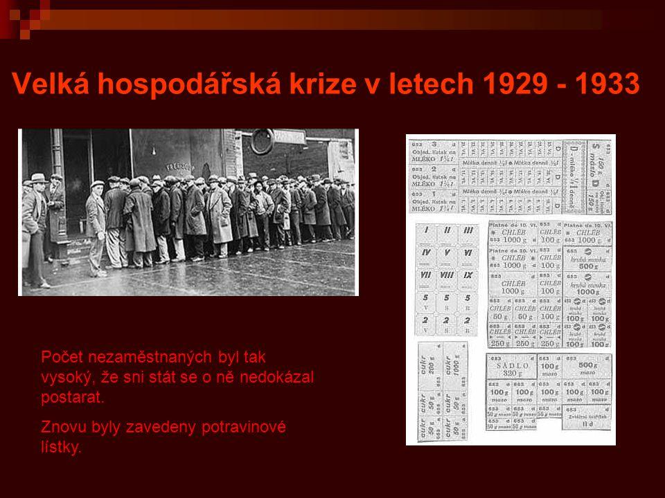 Velká hospodářská krize v letech 1929 - 1933