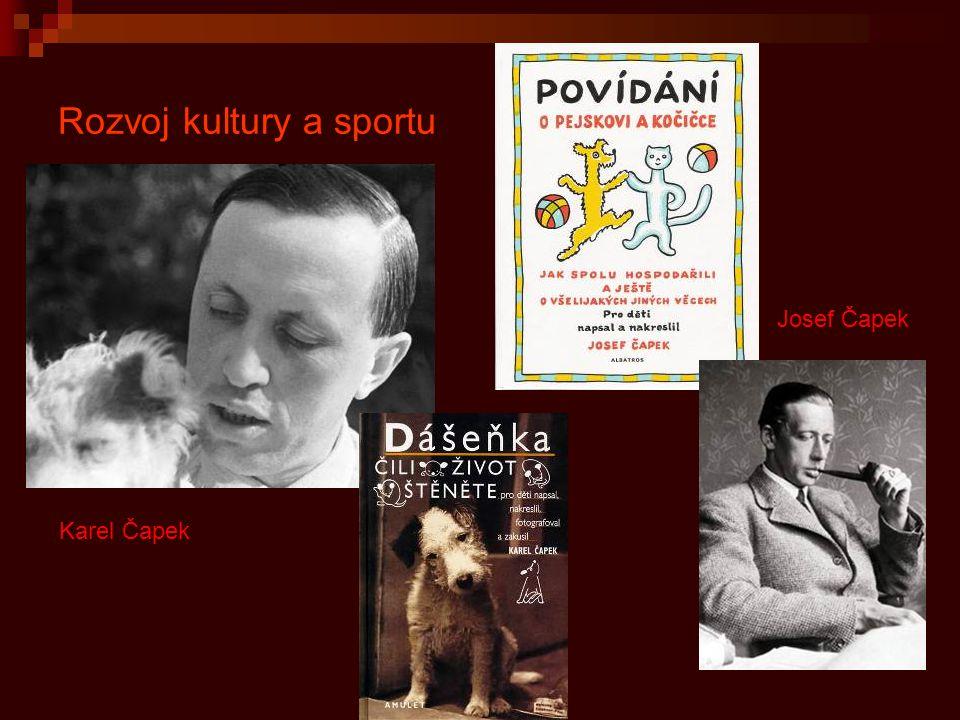 Rozvoj kultury a sportu
