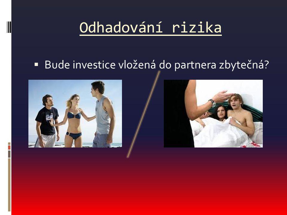 Odhadování rizika Bude investice vložená do partnera zbytečná