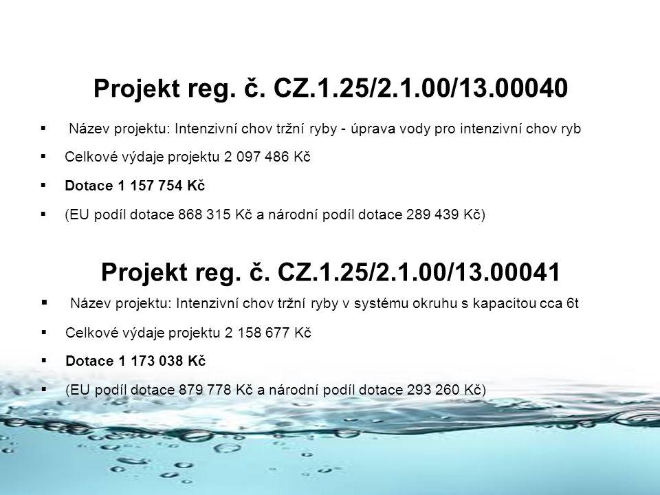 Projekt reg. č. CZ.1.25/2.1.00/13.00040 Název projektu: Intenzivní chov tržní ryby - úprava vody pro intenzivní chov ryb.