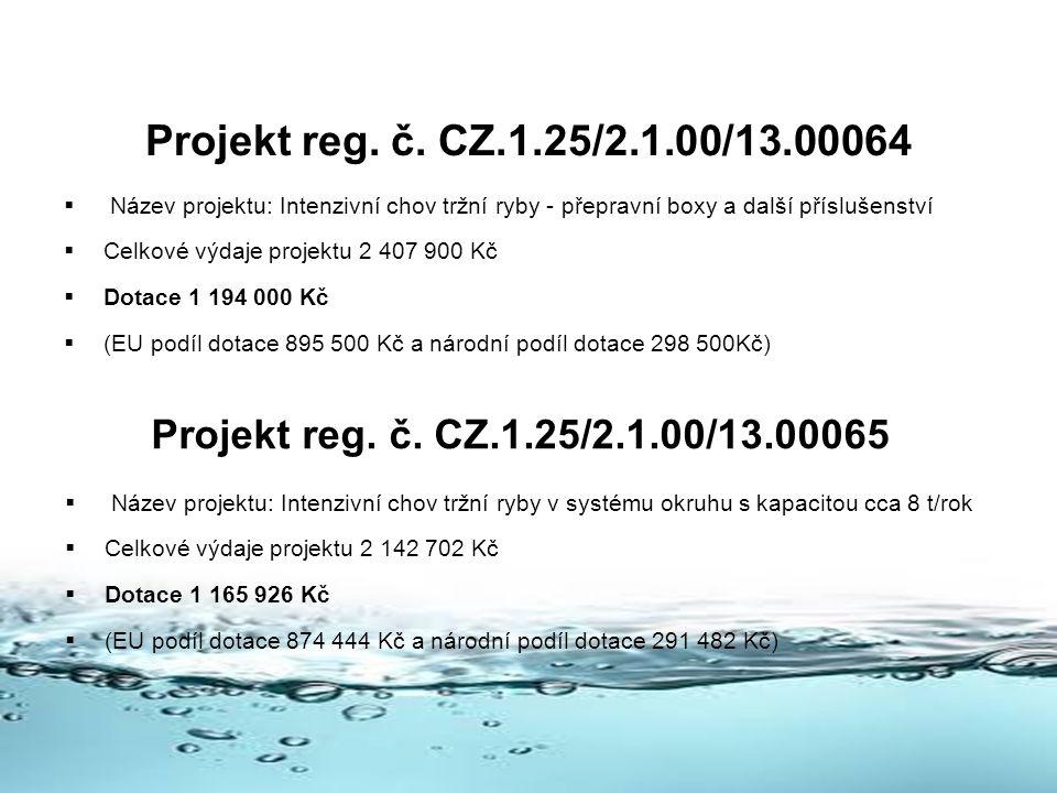 Projekt reg. č. CZ.1.25/2.1.00/13.00064 Název projektu: Intenzivní chov tržní ryby - přepravní boxy a další příslušenství.