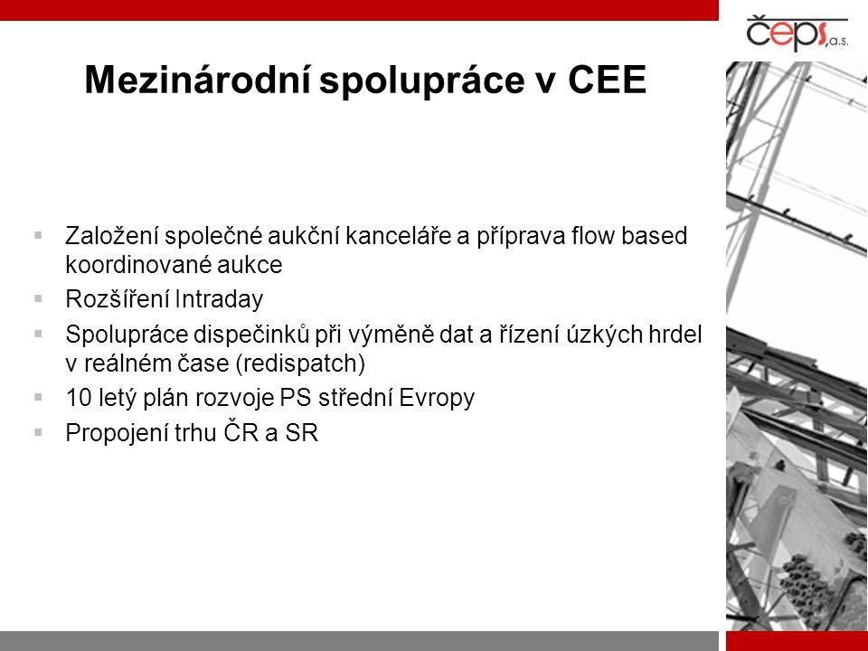 Mezinárodní spolupráce v CEE