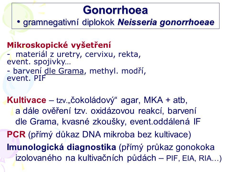 Gonorrhoea • gramnegativní diplokok Neisseria gonorrhoeae