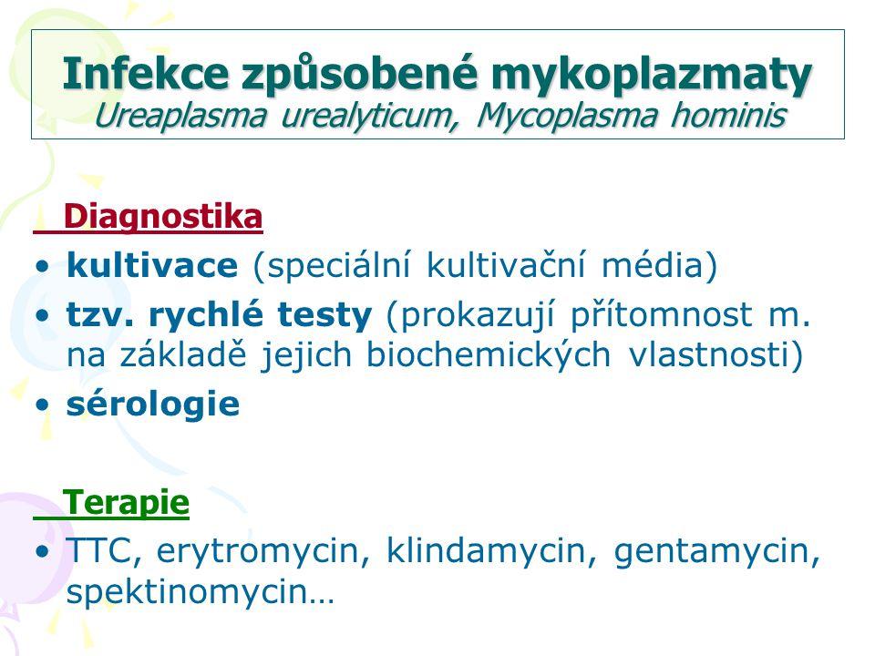 Infekce způsobené mykoplazmaty Ureaplasma urealyticum, Mycoplasma hominis