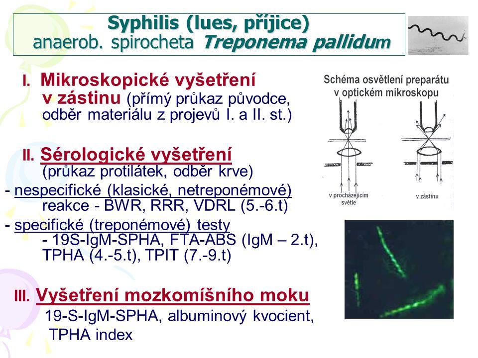 Syphilis (lues, příjice) anaerob. spirocheta Treponema pallidum