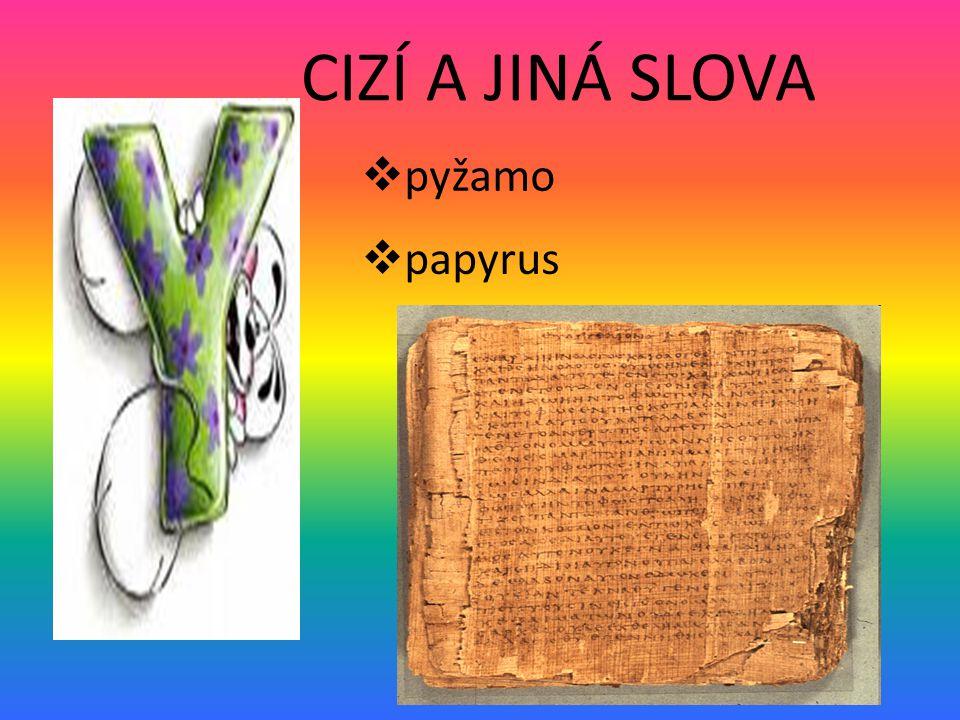 CIZÍ A JINÁ SLOVA pyžamo papyrus