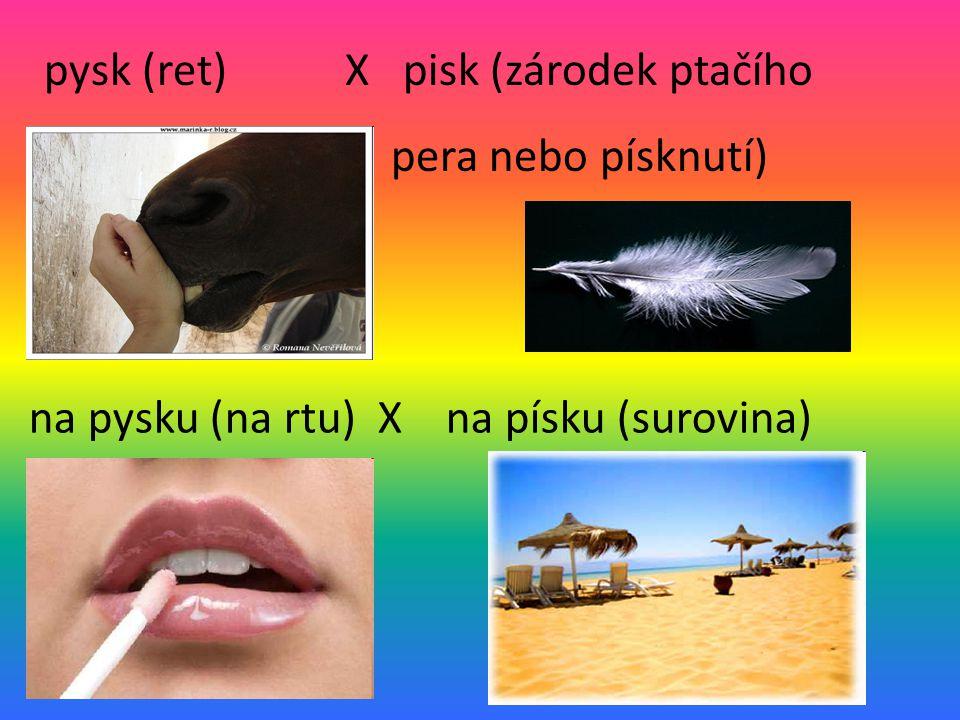 pysk (ret) X pisk (zárodek ptačího