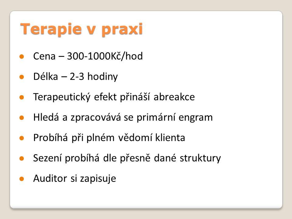 Terapie v praxi Cena – 300-1000Kč/hod Délka – 2-3 hodiny