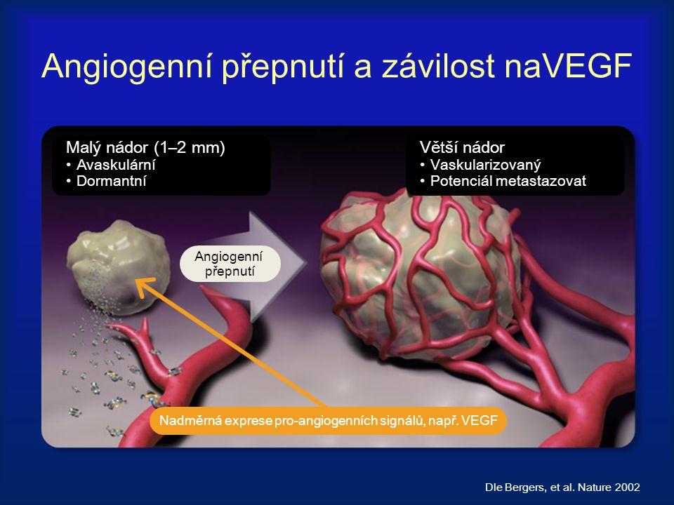 Angiogenní přepnutí a závilost naVEGF