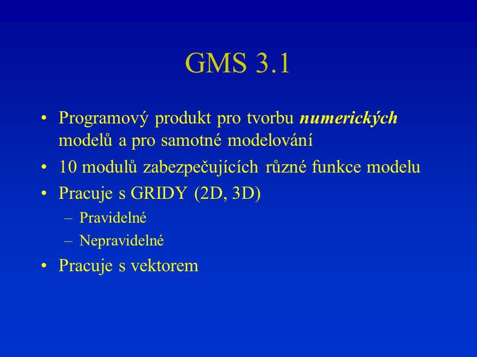 GMS 3.1 Programový produkt pro tvorbu numerických modelů a pro samotné modelování. 10 modulů zabezpečujících různé funkce modelu.